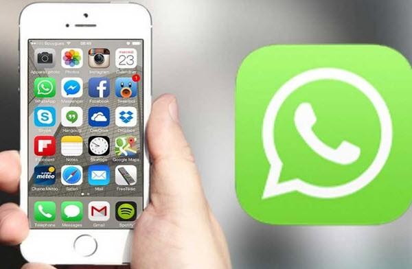 Whatsapp Beta & Test Nasıl İndirilir İos