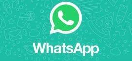 Whatsapp Kim Online?